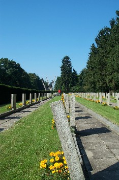 Wildrich Weltreise Friedhof in Szezecin